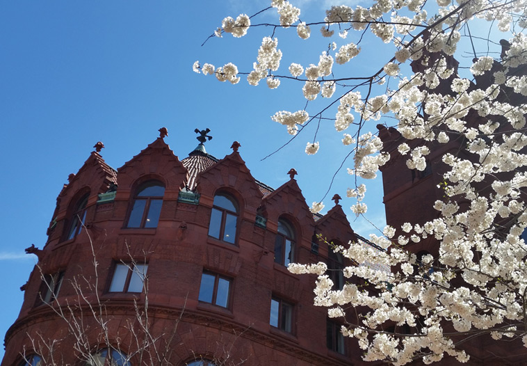 Fine Arts building exterior, apse and cherry blossoms