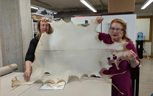 Crystal and Elizabeth with a hide-shaped sheet of translucent material