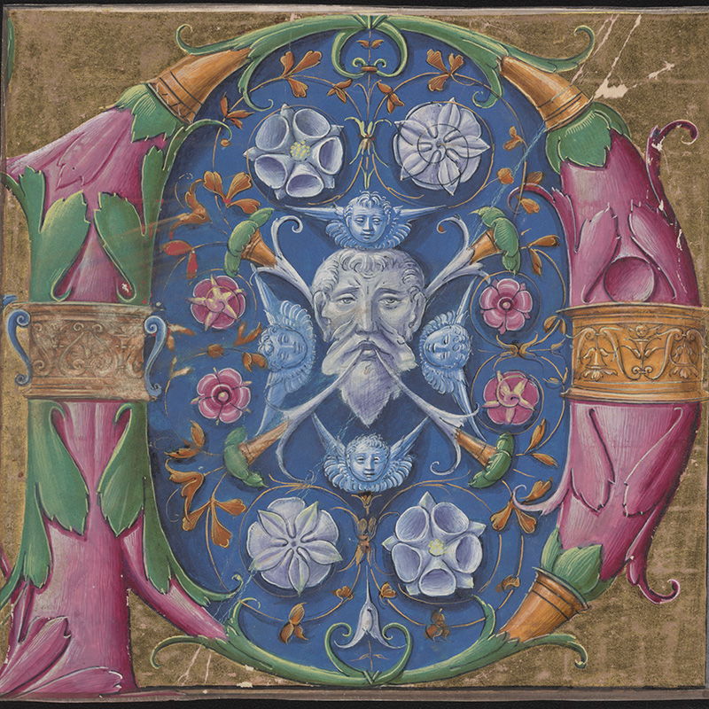 """Master B.F.,"" Decorated letter P from the Santi Angelo e Niccolò at Villanova Sillaro choirbooks; Lombardy, ca. 1500. The Free Library of Philadelphia, Lewis E M 76:52"