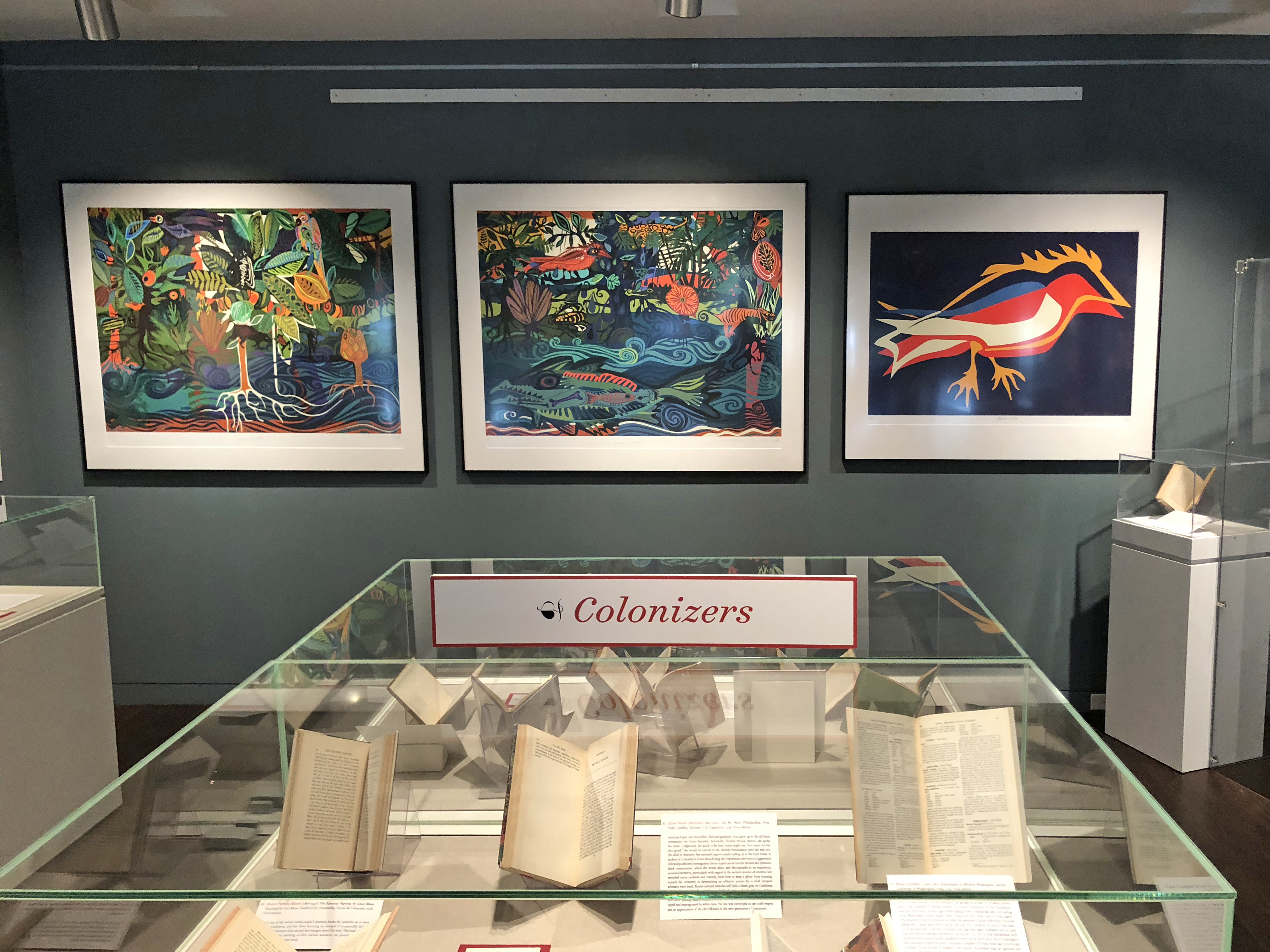 Goldstein Gallery - Case 7 - Colonizers