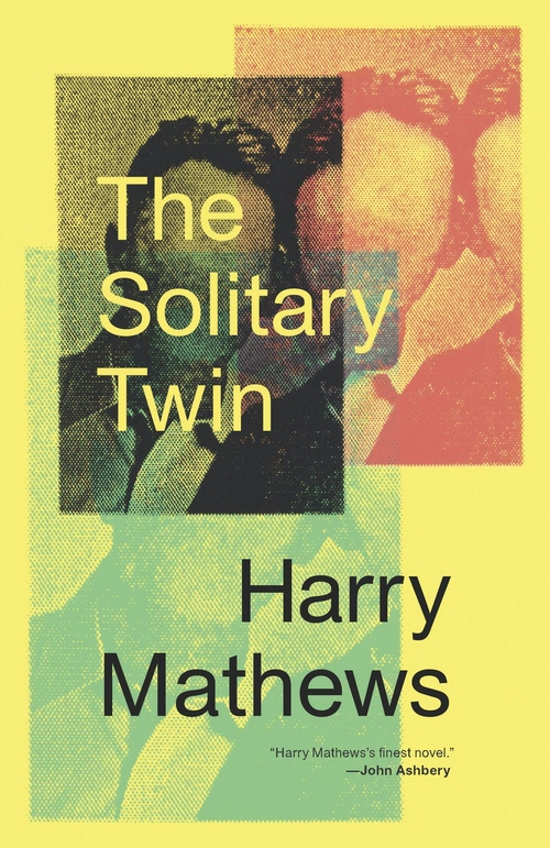 Solitary Twin book cover