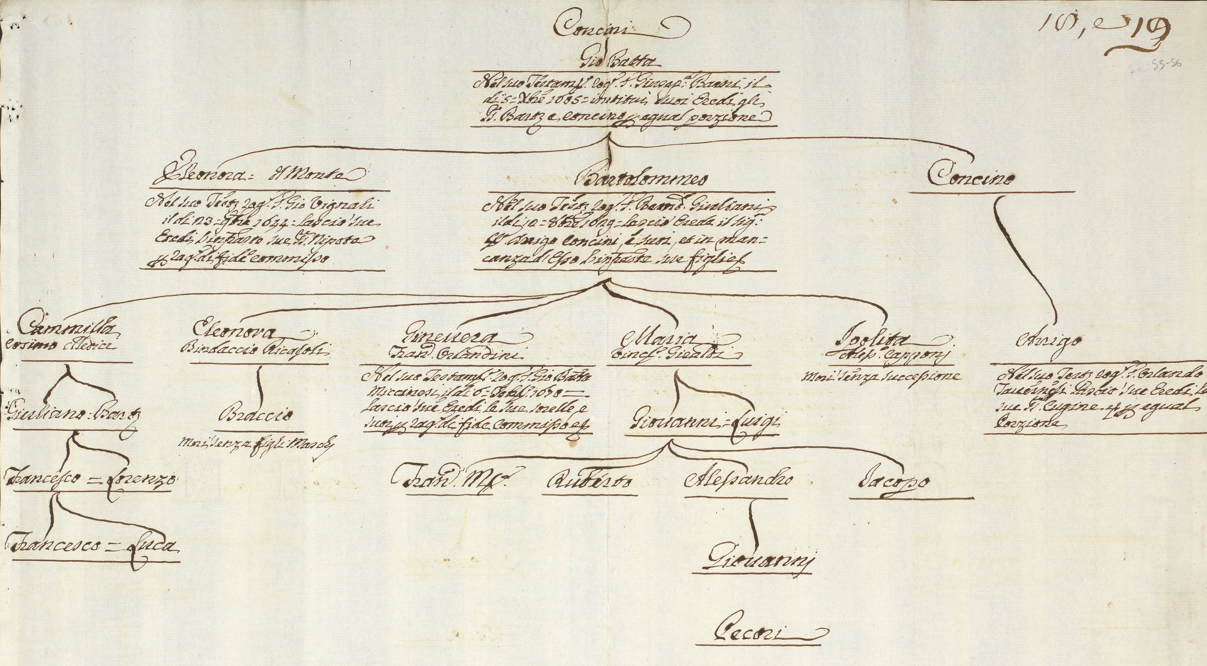 Concini Family Papers-Concini genealogy