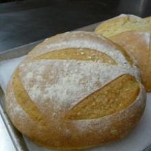Photograph of two loaves of bread on a baking sheet (2011), courtesy of Nick Malgieri